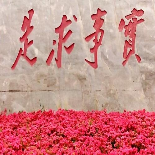 中国梦酒30蓝