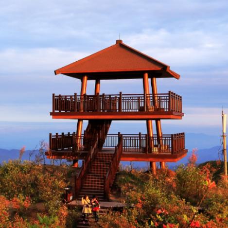湖南版的《小森林》,这里有初夏,美食,日出,星海,还有可爱的ta