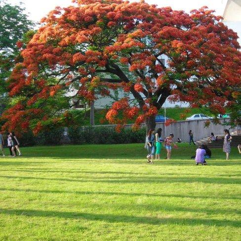 青岛二中是一所什么样的学校��