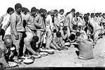太平天国战乱后广德大规模移民原因探究
