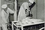80年代的黑龙江  经常可以捕到上千斤重的大鳇鱼