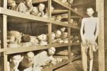 二战时期纳粹集中营老照片 铁栏之内俨然是地狱