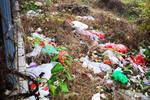武汉光谷武大园路段瞟抛弃物万余个