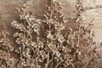 莆田传统木雕