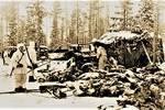 斯大林格勒战役胜利在望,苏军强势反攻,德军遭遇一系列惨败