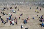 石家庄市草场街小学丁香中队植树活动 同学互帮互助增强团队意识