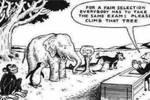 黄冠杰£º家庭教育是否能代替学校教育£¿