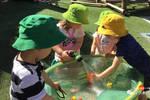 带娃插班墨尔本精英幼儿园经历��2��幼升小如何考入国际学校��