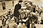二戰時期納粹集中營老照片:鐵欄之內儼然是地獄