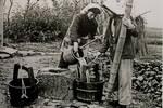 上海六十年代的民生老照片