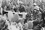 二战意大利入侵希腊把牙��崩��了��德国接手继续打��21天轻松拿下
