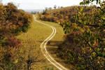 最早的高速公路����秦直道��两千年时间没人走��为何寸草不生��