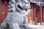 狮子原来自非洲��石狮为何成了中华文明中家宅的守护神��