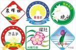 广州市真光中学£º读三年国际班领两张毕业证£¬一点不假