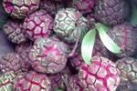 农村这4种罕见的野果��你可能见都没见过��第三种更是稀世珍宝