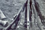 寫在98K步槍之前,Gew98衍生的那些卡賓兄弟們