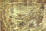 歷史故事——臭名昭著的花石綱事件