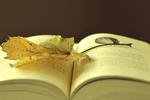 這4個高中英語學習的好方法,拯救過無數高中生!
