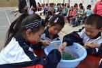 解決中國農村教育問題,給農村老師加工資解決不了實質問題!