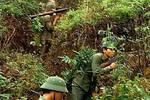 """中越戰爭:越軍王牌""""白頰鳥師""""戰斗力究竟強不強?基本被打殘"""