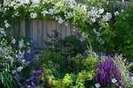 有個院子,讀書、喝茶、寫字、畫畫!