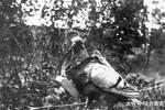 抗日战争中£¬它成?#23435;?#20891;优先攻击目标£¬日军只能排第二