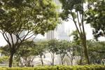 商科丨新加坡私立大学热门专业有哪些£¿