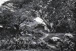 1870年英國人拍攝的廣東,商人看上很有錢