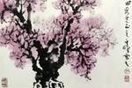 牡丹春月紅,素梅寒冬開——國畫花鳥藝術作品