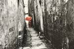 瞬間光與影——馮禎祥攝影藝術作品
