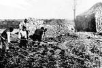 老照片:屠殺過后日軍用照片掩蓋罪行 營造南京迅速復蘇的假象