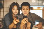 因内容不利国家形象 ,大韩航空拒播电影《寄生虫》