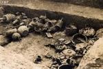 """河南某水库,水位一夜退去数百米,考古队赶到挖出6条""""金龙"""""""