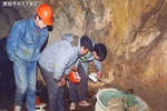 陕西一古墓发现27吨国宝,墓主无人知晓,一老农大喊:我知道!