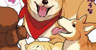日本网友吐槽:给自家狗买了一堆玩偶,结果狗好像不见了