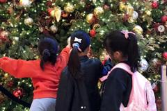 黎姿罕见分享女儿萌照,姐妹亲密同框庆圣诞神似三胞胎