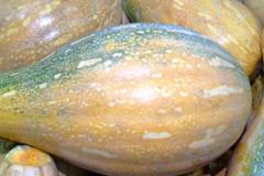 南瓜和此物一起煮,天天喝,肠胃好了,免疫力提高了,皮肤也水嫩!