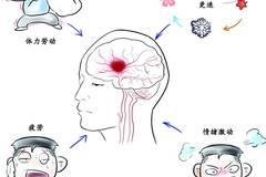 一分钟读懂高血压脑出血,出现这些症状时,一定要警惕!