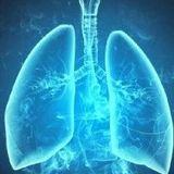《人间世》与患者同呼吸共命运丨肺移植你了解吗?