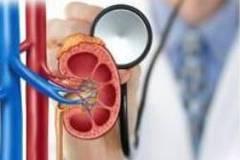 尿酸高了要吃药么?抽血检查肾功能,到底是在查什么?