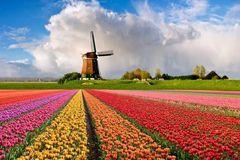 来过的人都说:全世界的春天都比不过这里!
