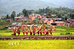 在云南的山村里有一群身穿铠甲服的妇女,她们的舞龙到了奥运会上