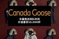 暗访丨-12??在加拿大鹅门口排队40分钟的人,是什么支撑了他们