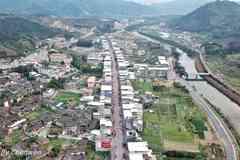 福建的这个小镇,以水仙茶闻名,还是我的家乡