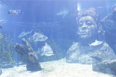 【品味手册】东南亚最大的都会水族馆曼谷暹罗海洋世界值不值得去逛?