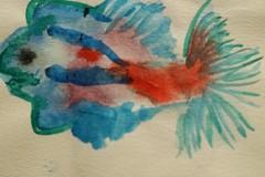 绘画:彩色的鱼