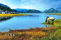 珠江的源头竟然在云南的这个山坡里,300年前徐霞客就去探寻过