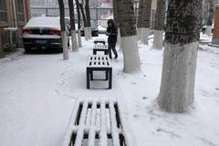 北京终于下了场雪