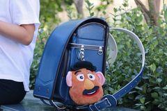 开学必备的书包!装上5公斤,背着还不累,孩子用它不驼背!