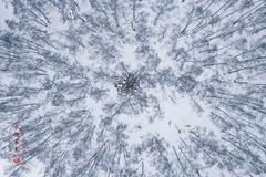 中国最美的雪村:夏秋油画冬季秒变水墨画,不比日本雪村差